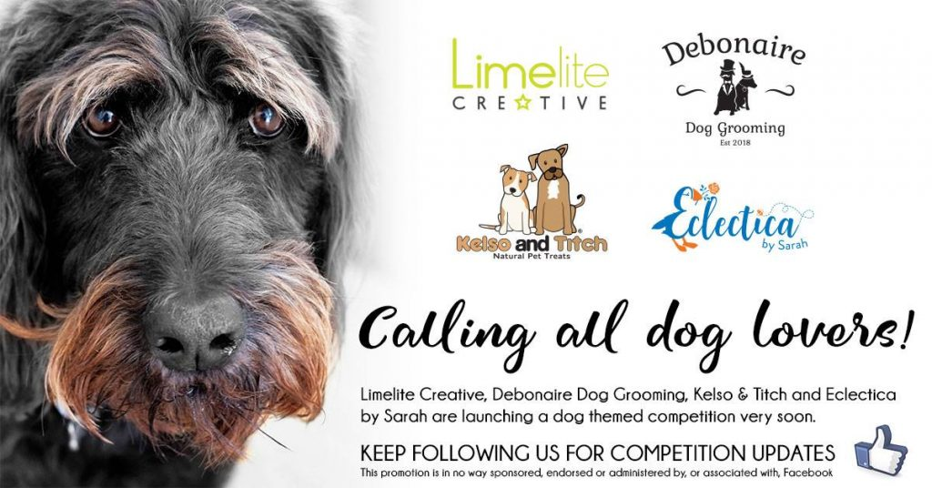 limelite creative competition