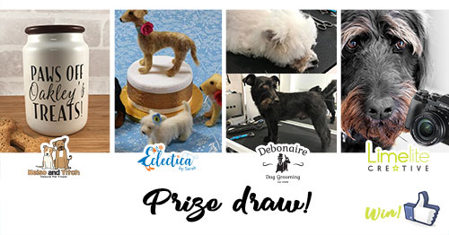 Limelite Creative Dog Lovers Competition