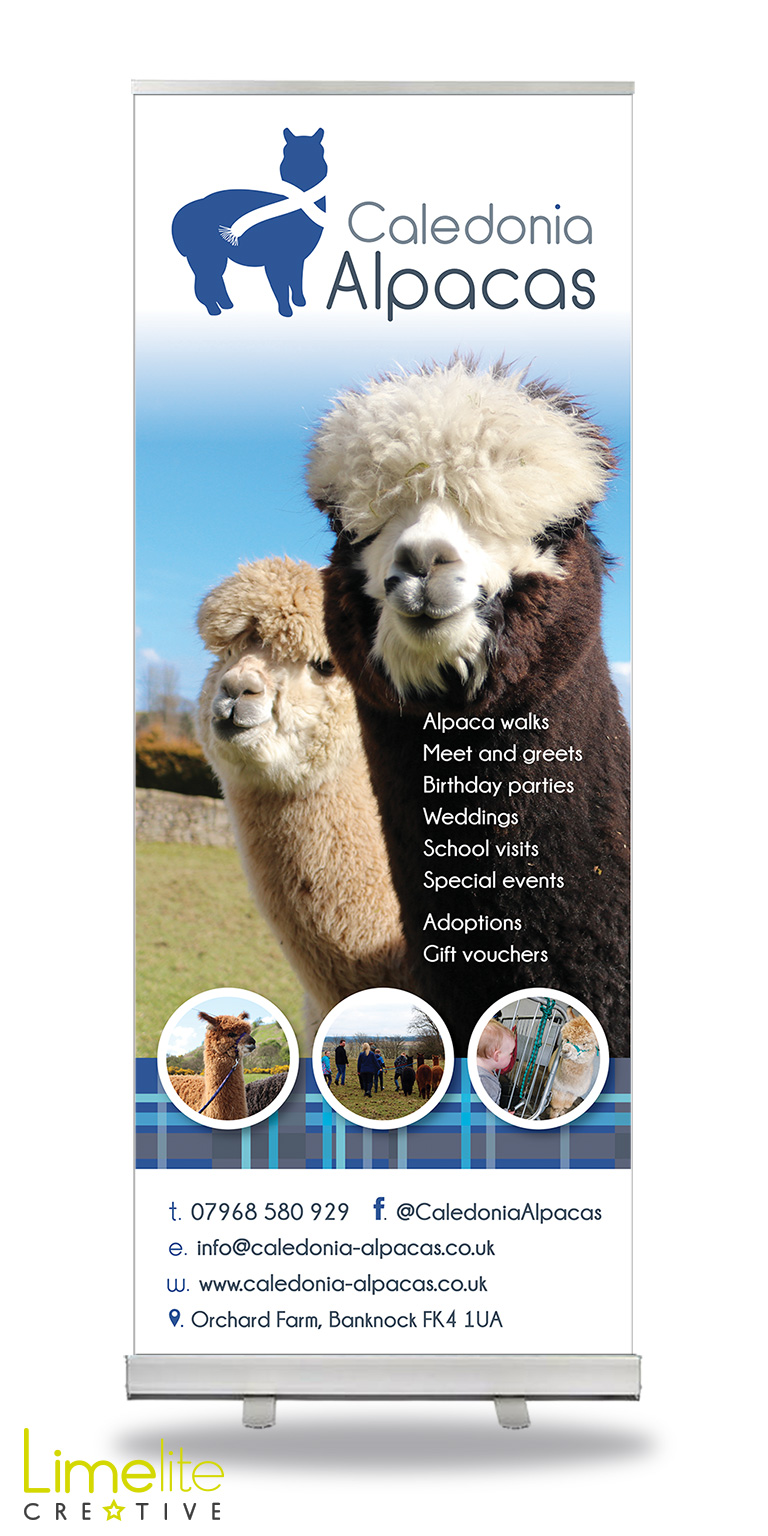 Pop-up Banner Design | Caledonia Alpacas