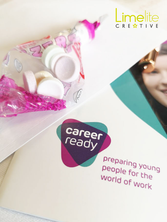 Career Ready forth valley mentorship programme