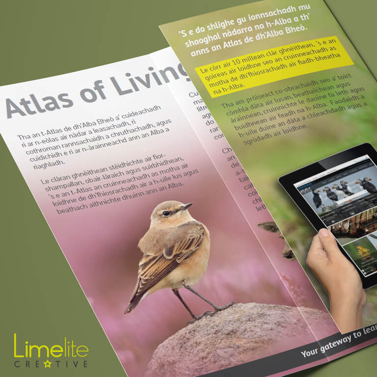 Leaflet Design | Atlas of Living